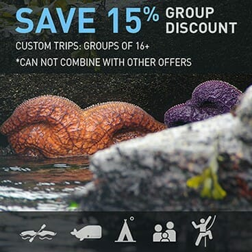 Groups of 16 or more - Save 15%