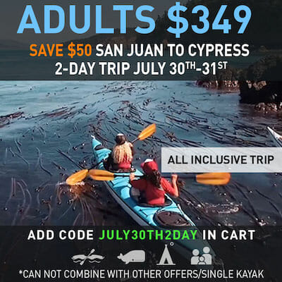 One Trip Only - Don't Miss this Savings