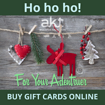 Buy AKT Gift Cards